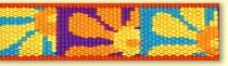 LUPINEルパイン1.9cm巾「クレージーディジィ」