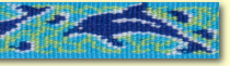 LUPINE ルパイン1.9cm巾「ドルフィンベイ」