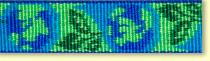 LUPINEルパイン1.9cm巾「アースデイ」