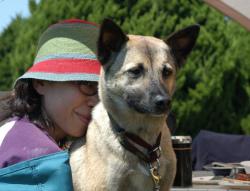 アバウトマイドッグズの優良家庭犬GCTテスト合格犬の「Qoo」