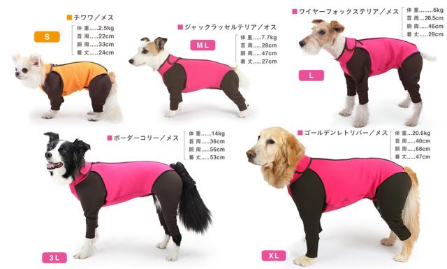 アルファアイコン・犬種別サイズ表